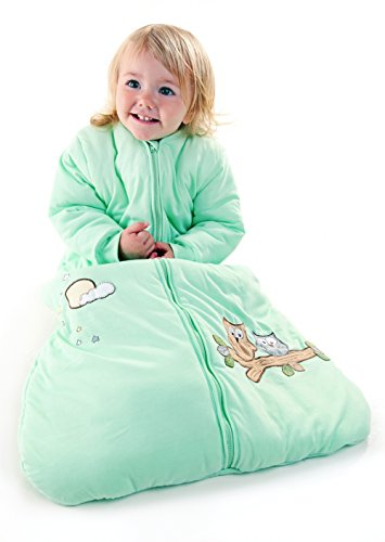 Winter Baby Sleep Sack Long Sleeves Wearable Blanket 3.5 Tog - Mint Owl - 0-6 months/Small