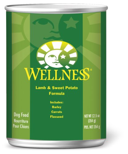 Wellness Canned Dog Food for Adult Dogs, Lamb and Sweet Potato Recipe, 12-Pack of 12-1/2-Ounce Cans