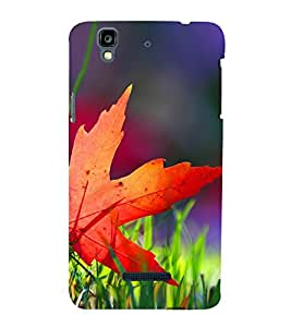 Beautiful Autumn Leaf 3D Hard Polycarbonate Designer Back Case Cover for YU Yureka :: YU Yureka AO5510