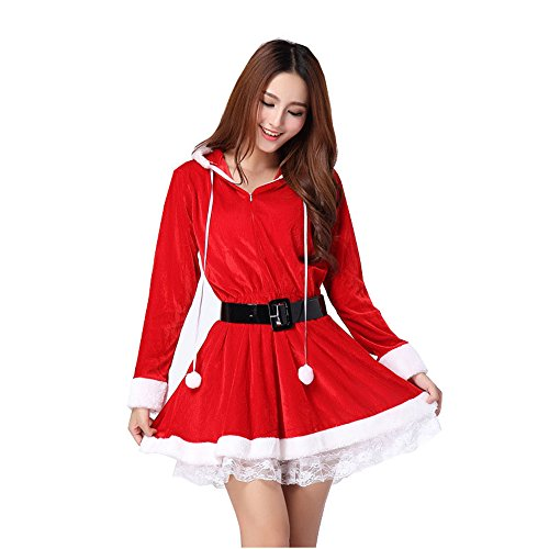 Women's Miss Santa Santa Claus Party Dress Christmas Halloween Costume