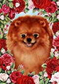 Pomeranian Red by Tamara Burnett Valentine Roses Garden Dog Breed Flag 12'' x 17