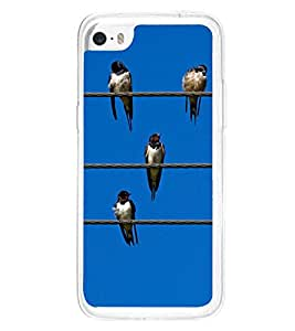 Birds Lined up on Wires 2D Hard Polycarbonate Designer Back Case Cover for Apple iPhone 5C