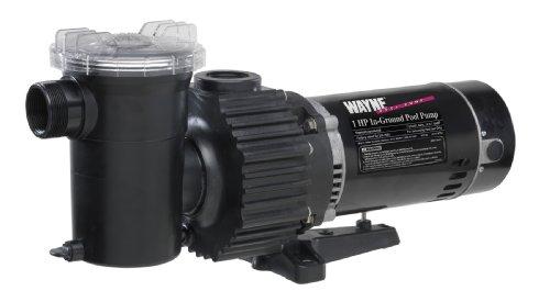 Wayne Wip100 1 Horsepower Pool Pump Swimming Pools Above Ground For Sale Wayne Wip100 1