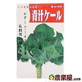 葉菜類 種 青汁ケール 小袋(約4ml)