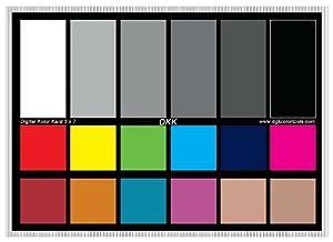 """Amazon.com : DGK Color Tools DKK 5"""" x 7"""" Set of 2 White"""