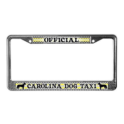 CafePress - Official Carolina Dog Taxi License Plate Frame - Chrome License Plate Frame, License Tag Holder (Dog Taxi License Plate compare prices)
