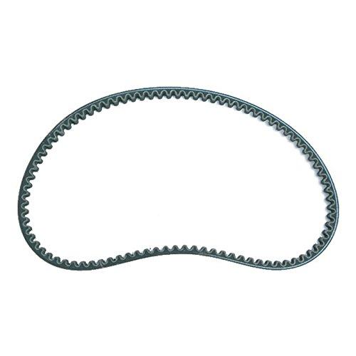 cuneo-cinghie-propulsione-standard-20-x-835-mm-dentata-praktiker-rex-thurbo-obi-costruzione-mercato-
