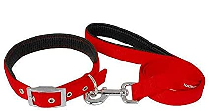 Paws For A Cause High Quality And Stylish Padded Nylon Dog Collar And Leash Set 1 Inch - Red By Amazon @ Rs.149
