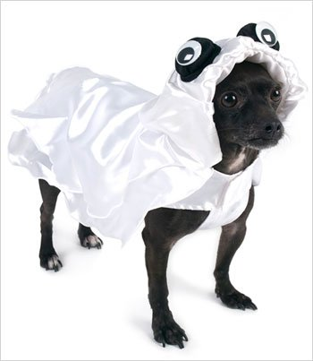 Gorgeous Ghost Costume for Dogs