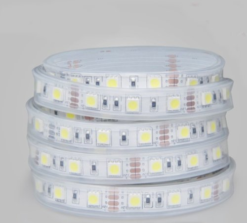 Dc12V Silicone Tube Encapsulation Ip68 4W High Power Led Strips Light Smd3528 60Leds/M Rgb 5M/Roll