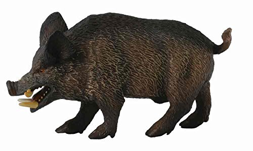 CollectA Wild Boar Figure - 1