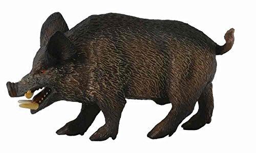 CollectA Wild Boar Figure - 1