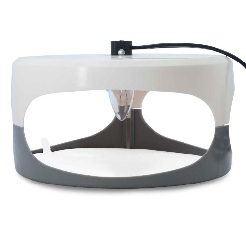 aspectek sticky dome fleatrap 2 glue discs non poisonous odorless and natural flea traps. Black Bedroom Furniture Sets. Home Design Ideas
