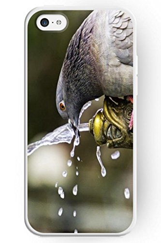 Sprawl Iphone 5C Case Wild Animal Style Hard Skin Cover Shell For Mobile Phone Apple 5C -- Pigeon Drink Water