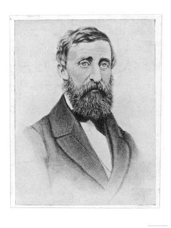 henry david thoreau the natural history essays