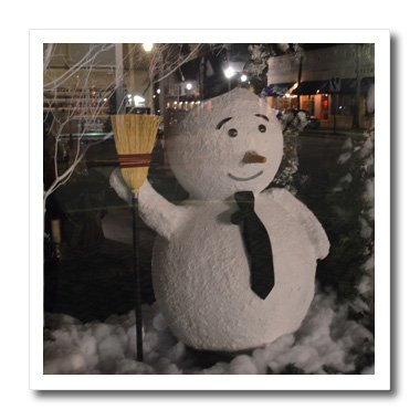 Susans Zoo Crew Florida - Snowman with street scene reflection - 8x8 Iron on Heat Transfer for White Material (ht_212445_1)
