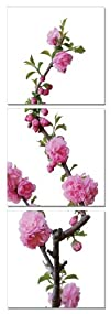 Bloom of the Season. Vertical Contemporary Art, Modern Wall Decor, 3 Panel Wood Mounted Giclee…
