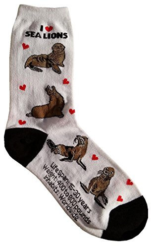 I Love Sea Lions Women Socks Cotton New Gift Fun Unique Fashion