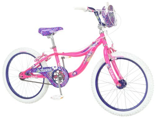 20-Inch Girl'S Bike - Schwinn Girl's Mist Bicycle