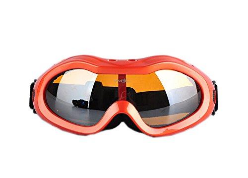 Adults Skiing Goggle Orange Windproof Protective Gear