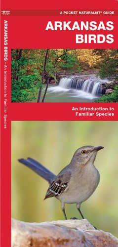 Arkansas Birds: An Introduction to Familiar Species (State Nature Guides)