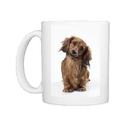 Photo Mug Of Miniature Long-Haired Dachshund / Teckel Dog From Ardea Wildlife Pets
