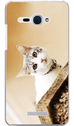 HTC J butterfly HTL21 ケース HTL21 カバー 『Real Cat Attention』 au スマートフォン スマフォケース 携帯カバー HTC J butterfly HTL21 専用 TL-STAR