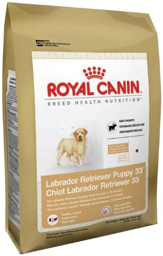 Royal Canin Dry Dog Food, Labrador Retriever Puppy 33 Formula, 30-Pound Bag