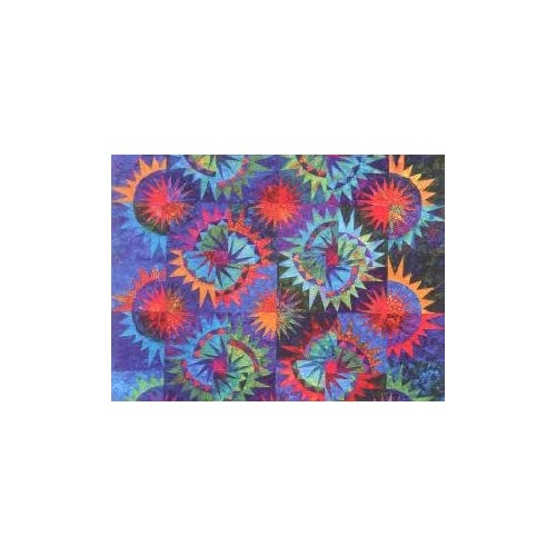Amazon.com: Judy Niemeyer Quilting 4th of July Quilt Pattern