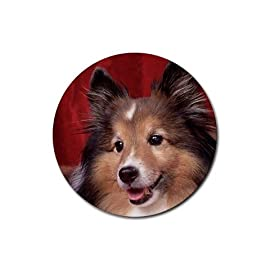 Cute Border Collie photo Round Rubber Coaster set 4 pack Great Gift Idea