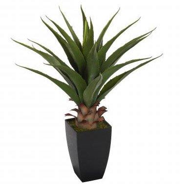 Plante artificielle avec pot 70 cm les petites for Plante 70 cm