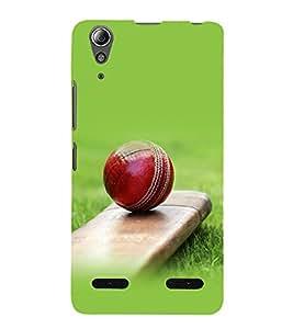 printtech Bat Ball Cricket Back Case Cover for Lenovo A6000