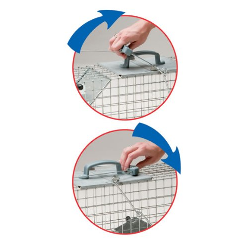 Havahart 1084 Easy Set One-Door Cage Trap for Rabbits, Skunks, Minks and Large Squirrels-Made in the USA