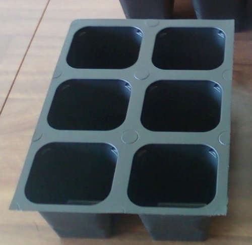 Seed starter trays 120 LARGE CELLS total (20 trays of 6 cells each)