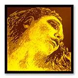 EVAH PIRAZZI GOLD エヴァ ピラッツィ ゴールド ヴァイオリン弦セット(G線シルバー) (E線ループエンド)