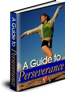 A MP3 CD AUDIO GUIDE TO PERSEVERANCE - STICK AT IT