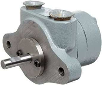 BSM Pump 713-00-2 Model 00 Rotary Gear Pump CW  Rotation Without Foot