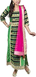 Deveesha Batra Women's Raw Silk regular Fit Salwar Suit (DB201512_XS, Green and pink, XS)