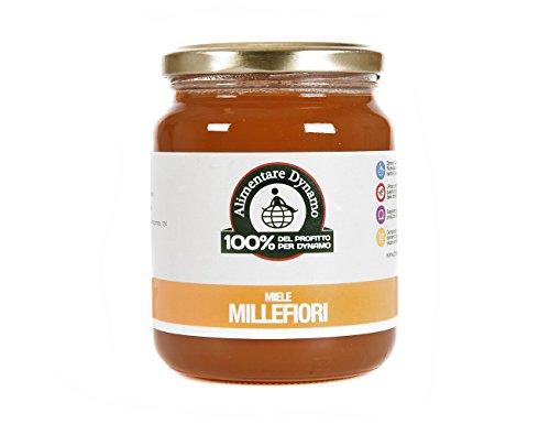 dynamo-camp-miele-millefiori-estratto-a-freddo-500-gr