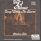 DEEP WITHIN THE STORM 7 INCH (7