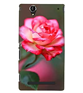 Printvisa Pink Rose With Green Background Back Case Cover for Sony Xperia T2 Ultra::Sony Xperia T2 Ultra Dual
