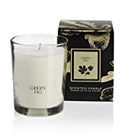 Signature Green Fig Inclusion Candle