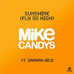 Sunshine (Fly So High) (2012 Radio Mix)