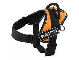 blind dog card game