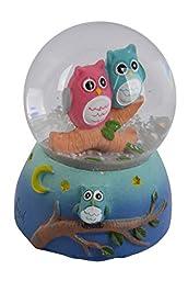 Couple Owl Snow Globe Snowglobe Color Light Ball Water Figurine Ornament
