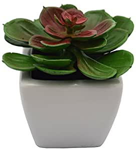 Fourwalls Artificial Mini Succulent Plant in Ceramic Vase