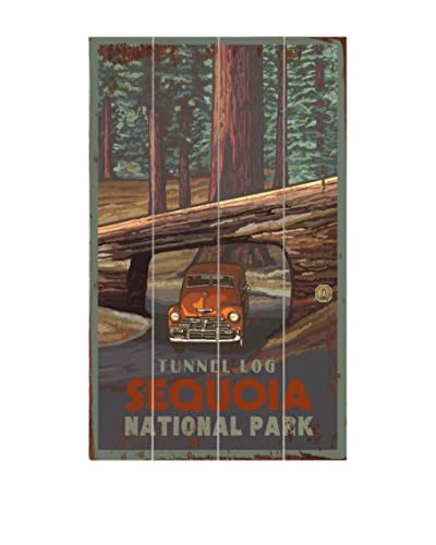 Artehouse Tunnel Log Sequoia National Park Wood Wall Décor, Brown, 23 x 14