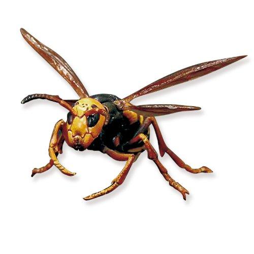 野生 昆虫 リアル フィギュア コレクション 細かいディティールにこだわった昆虫模型 おしゃれなインテリアにも最適♪ 保証書つき 【 巨大 スズメバチ 蜂 】