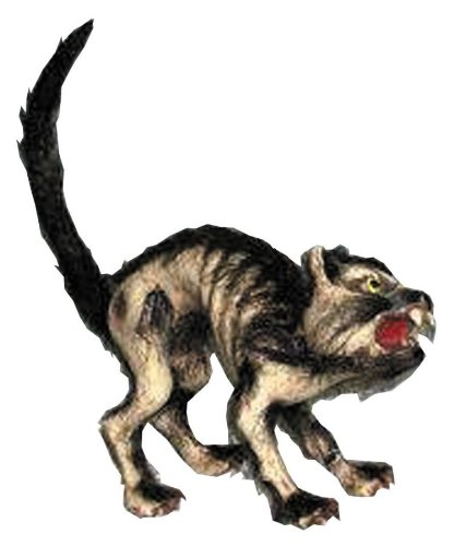 Halloween Cat Halloween Prop