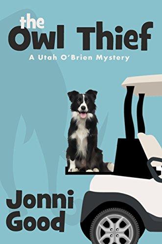 The Owl Thief by Jonni Good ebook deal